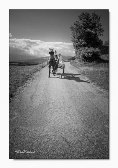 Sam Moraud Photographie