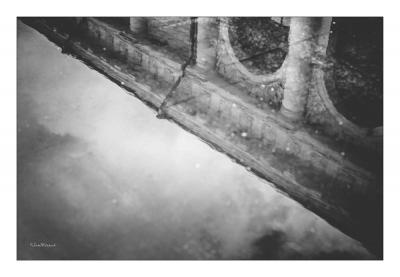 sammoraud-photographe-moscou-3680