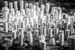 symposium-sculpture-champagnole_am_0158