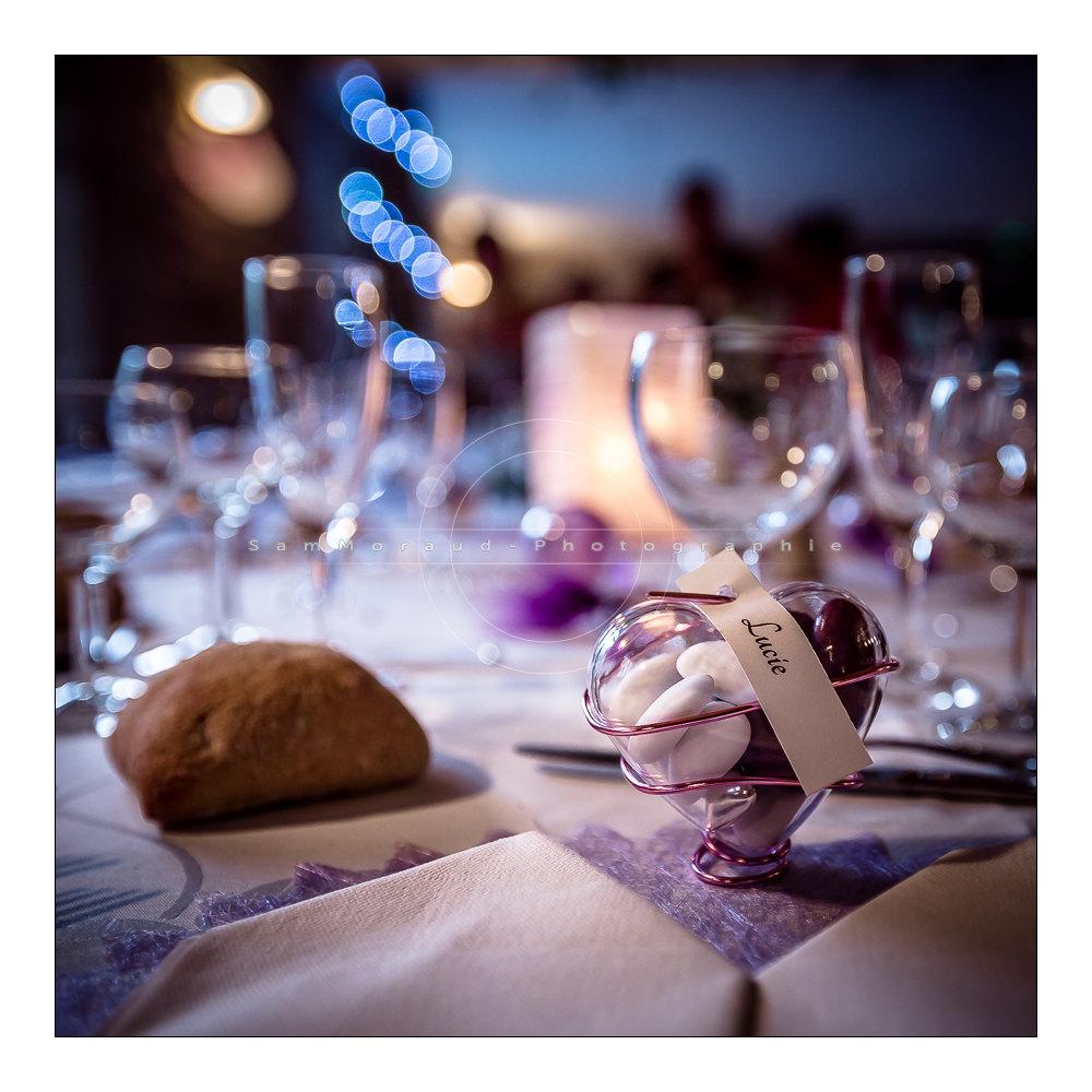 photographe seminaire mariage isere - Reception Mariage Isere