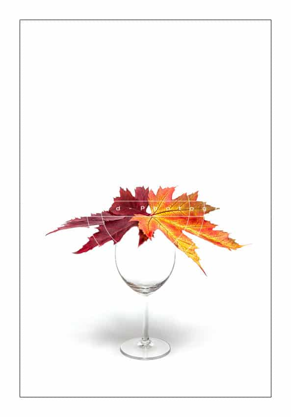 2leaves-in-a-glass